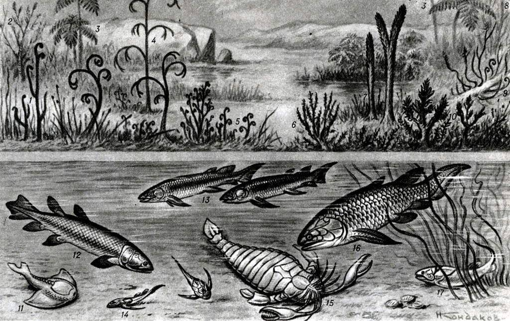 Животные девонского периода картинки